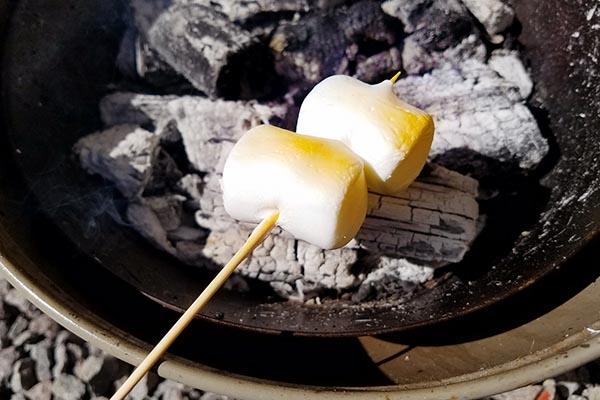 ジャンボ焼きマシュマロ